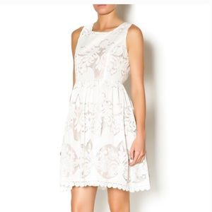 White Mystree Isabella lace dress